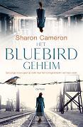 Het Bluebird geheim