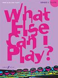 What else can I play - Flute Grade 3